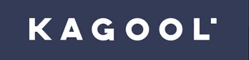 Kagool is a SearchStax Partner